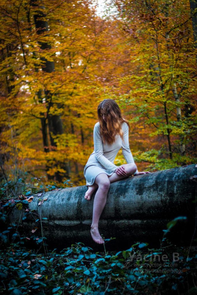 La demoiselle et la forêt - 2